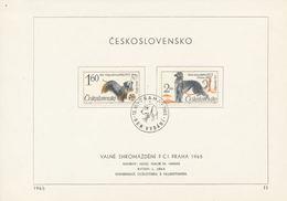 Czechoslovakia / First Day Sheet (1965/11) Praha (a): FCI General Assembly Prague 1965 (painter: M. Hanak) - Kunst