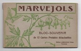 48 LOZERE - MARVEJOLS Carnet Complet De 12 Cartes - Marvejols