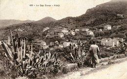 420 Le Cap Corse Pino Circulee En 1923 - France