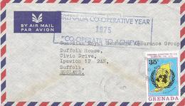 Grenada 1975 UN Admission Special Cooperative Year Handstamp Cover - Grenada (1974-...)