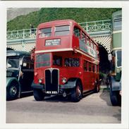 Bus Photo London Transport RLH23 Brighton 1974 AEC Regent III Weymann MXX223 - Cars