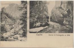 VENETO -  CAPRILE  (Belluno) - Serrai Di Sottoguda - Ed.G. Avi - Alleghe - Belluno