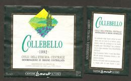 ITALIA - Etichetta Vino COLLI DELL'ETRURIA CENTRALE Doc 1992 Cantina LEONARDO Da Vinci Bianco Di TOSCANA - Vino Blanco
