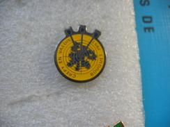 Pin's Du Club De Tir à L'Arc De La Commune De CREPIS En VALOIS, Bouquet 1993 - Tir à L'Arc