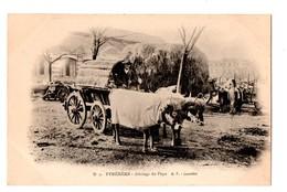 65 - Les Pyrénées . Attelage Du Pays (Lourdes) - Réf. N°359 - - Lourdes