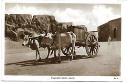 YEMEN - Bullock Cart, Aden - Yémen