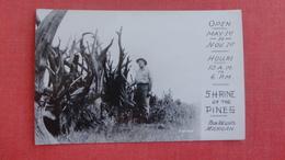 Shrine Of The Pines  Baldwin Michigan  == Ref 2524 - United States