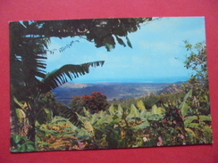 51583: AMERICA: CARIBBEAN SEA: PUERTO RICO: View  From The Tropical Rain Forest, EL YUNQUE. - Postcards