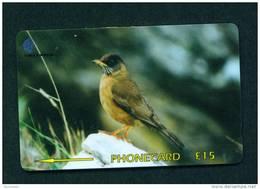 FALKLAND ISLANDS - GPT Magnetic Phonecard As Scan