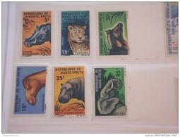 HAUTE VOLTA - 1966 ANIMALI 6 Valori   - NUOVI(++)-TEMATICHE - Alto Volta (1958-1984)