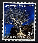Rep. Djibouti ** N° 664 - Arbre - Djibouti (1977-...)