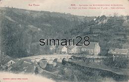 LE PONT DE CIROU Environs De Bourgnounac Mirandol - N° 424 - VUE GENERALE - France