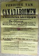 1904 Venditie Van Schoone Canadaboomen Te Nieuwerkeken, Aalst En Gijsegem Notaris De Gheest - Affiches