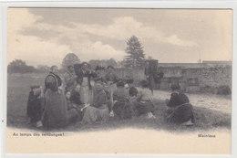 Au Temps Des Vendanges - CPN       (P34-40406) - Vignes