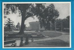 C.P.M. Hagondange - Parc Municipal - Hagondange
