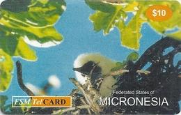 Micronesia - FSMTC - Bird In Nest - FSM-R-168 - 10$ Remote Mem. Used
