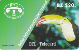 TARJETA DE BELICE DE UN TUCAN  (BIRD-PAJARO)