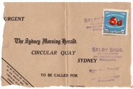 Australia – New South Wales Government Tramways ( No Tram ) 6d/4d Newspaper Packet Stamp On Front