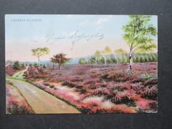 AK 1909 Einsamer Heideweg. Lüneburger Heide. Ottmar Zieher, München - Blumen