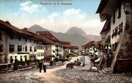 GRUYERES ET LE MOLESON     SCHWEIZ SWITZERLAND SVIZZERA Suisse SUIZA - FR Freiburg