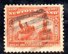 XP2938 - NEWFOUNDLAND 1897 , Gibbons N. 72  Usato - Newfoundland