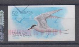 Canada YV 1843 O 2002 Sterne - Mouettes