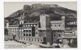 MONTE CARLO - N° 111 - LE PALAIS DU PRINCE ET LA TETE DE CHIEN - CPA VOYAGEE - Prince's Palace