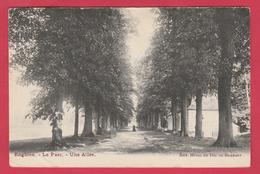 Enghien - Le Parc - Une Allée - 1904 ( Voir Verso ) - Edingen