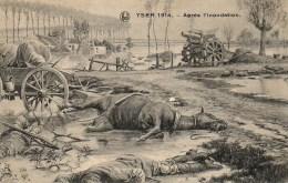 Guerre 14/18  YSER 1914  Après L'inondation - Guerre 1914-18