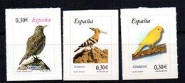 Sellos Año 2007  España - Birds