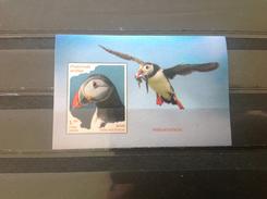 Cuba - Postfris / MNH - Sheet (Imperforated) Watervogels 2016 - Cuba