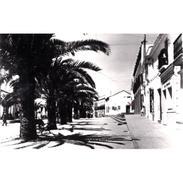 HLVTP7431-LFTD7573.Tarjeta Postal DE HUELVA.Jardines,Arboles Y AVDA DEL TENIENTE CORONEL MARTIN En LEPE - Huelva