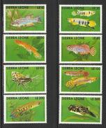SIERRA LEONE  1991  FISH  SET   MNH - Poissons