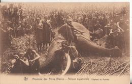 Afrique Equatoriale Ruanda Missions Des Peres Blancs  Elephant Du Ruanda - Ruanda-Urundi