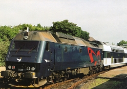 Diesel Locomotive Of Danish Railways (DSB)  At Vordingborg 2004   -  CPM - Trains