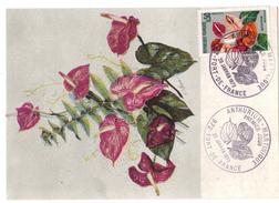 Carte Postale Anthurium Martinique - Fort De France