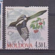Moldavie YV 614 O 2010 Pie - Passereaux