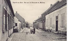 CAPELLE-AU-BOIS (Kapelle-op-den-bos) - Vue Sur La Chaussée De Malines - Kapelle-op-den-Bos
