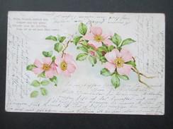 AK 1903 Blumen Wilde Röslein, Zierlich Fein, Grüsset Eine Mir Allein... Nach Hildburghausen - Blumen
