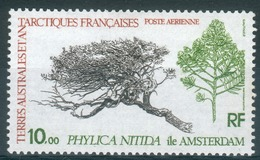 French Antarctic (FSAT), Tree, Phylica, 1979, Airmail, MNH VF - Airmail