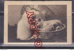 Au Plus Rapide Calendrier Mémento Publicitaire Année 1937 Lyon Pharmacie Des Etats-Unis Chat - Kalenders