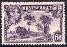 Montserrat 1938 6d P. 13 SG107 - Mint - Montserrat
