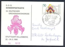 Germany Deutschland 1980 Card: Flora Flowers Orchis Orchids Orhidee Deutscher Orchideen Kongress Stuttgart - Orchideen
