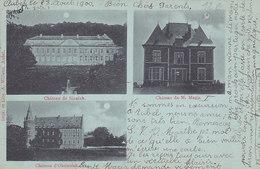 Château De Sinnich, De M Magis, D'Obsinnich (A. Willems, 1900) - Aubel