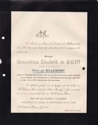 SINTE-CATHARINA-WAVER Alexandrina De RAEDT Veuve De Félix De BILLEMONT  1834 1901 Kasteel Van FRUYTENBORGH Doodsbrief - Esquela