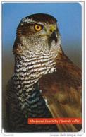 SLOVAKIA PHONECARDS BIRD-50000cps -33/96-USED(2) - Aquile & Rapaci Diurni