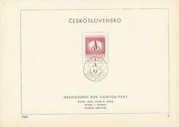 Czechoslovakia / First Day Sheet (1968/06) Praha: International Year For Human Rights 1968; Painter: M. Hegar - Beroemde Personen