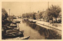 Palavas-les-Flots - La Canalette, Au Fond Maguelone - Carte Yvon N° 430 - Palavas Les Flots