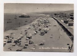 Senigallia (Ancona) - Rotonda E Spiaggia - Animata -  Viaggiata Nel 1958 - (FDC3925) - Senigallia