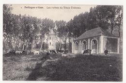 Hollogne S/ Geer:Les Ruines Du Vieux Château.